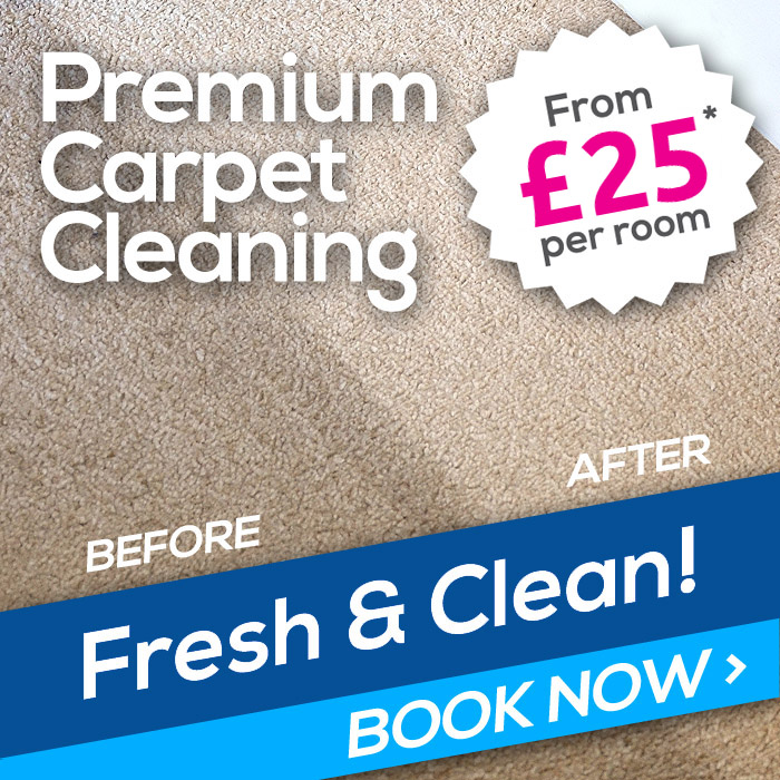 carpet-cleaning-side-advert